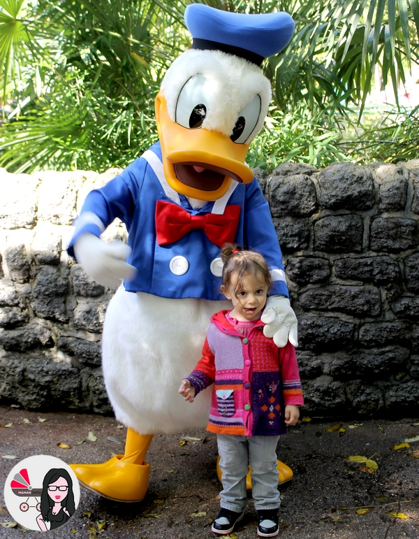 disney land donald
