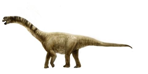caramasaurus