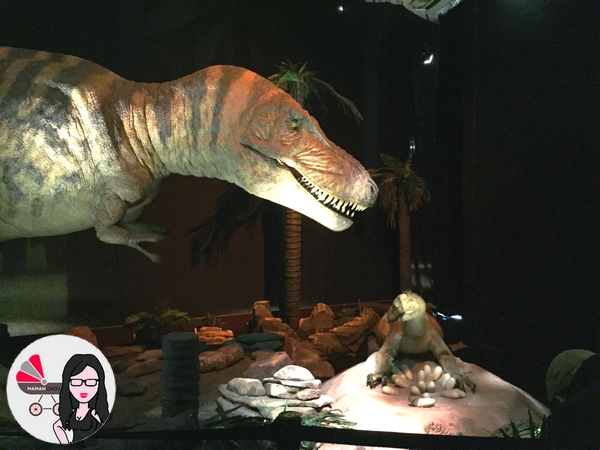 dinosaures animés (1)