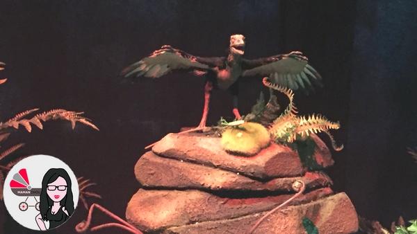 dinosaures animés (3)