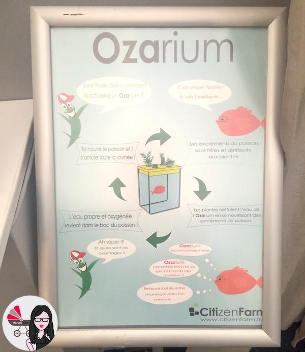 ozarium (1)