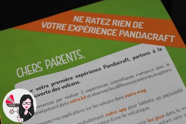 pandacraft (17)