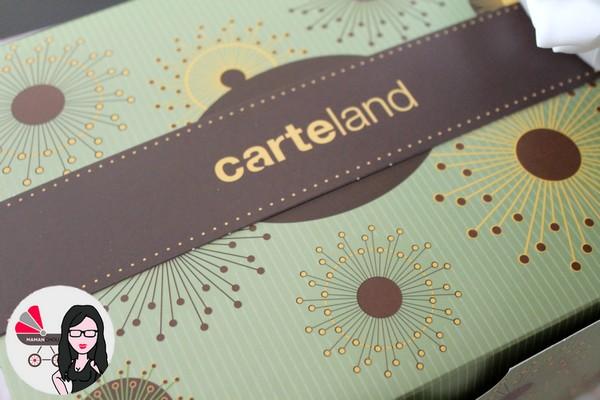 carteland (3)