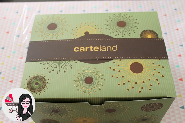 carteland (4)