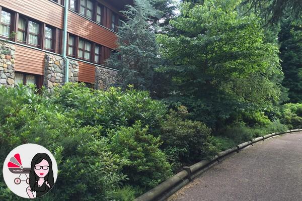 sequoia lodge (8)
