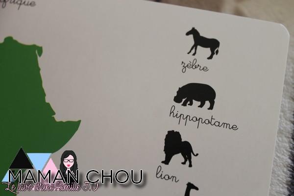 ma-pochette-montessori-les-animaux-des-continents-6