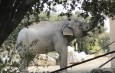 Nos Escapades #26: Le Zoo de la Barben