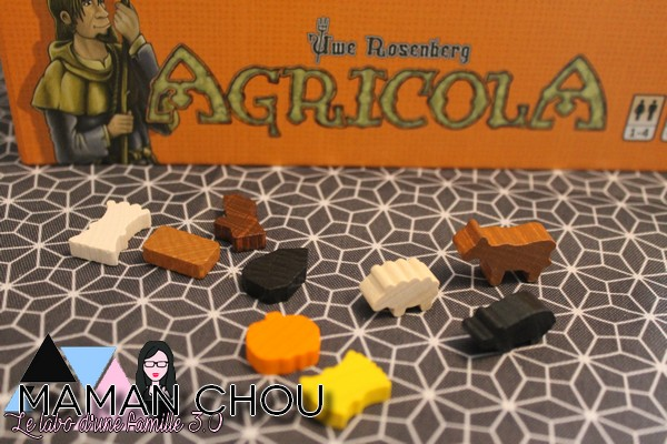 agricola (12)