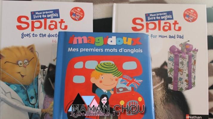 livres anglais (1)