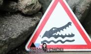 A la découverte de la ferme aux crocodiles