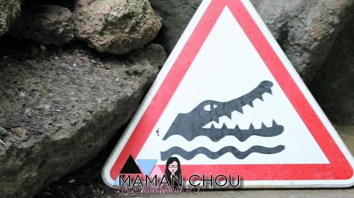 la ferme aux crocodiles (25)